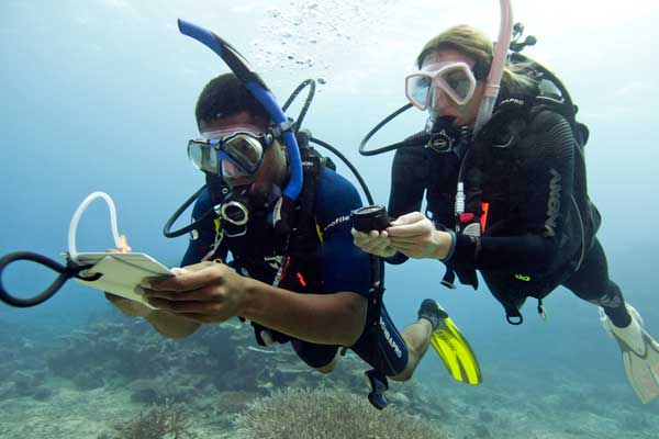 Formation Advanced PADI